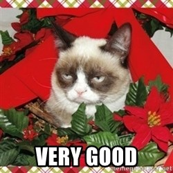 Grumpy Christmas Cat - VERY GOOD