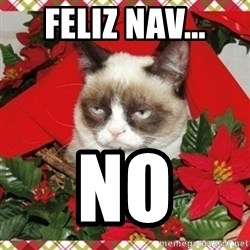 Grumpy Christmas Cat - Feliz nav... no