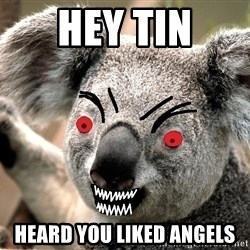 Abortion Koala - HEY TIN HEARD YOU LIKED ANGELS