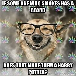 Stoner Nerd - if some one who smokes has a beard does that make them a harry potter?