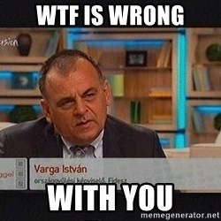 vargaistvan - WTF IS WRONG  WITH YOU