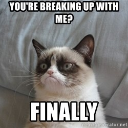 Grumpy cat good - YOU'RE BREAKING UP WITH ME? FINALLY