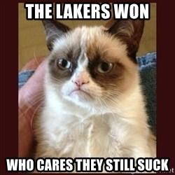 Tard the Grumpy Cat - the lakers won who cares they still suck
