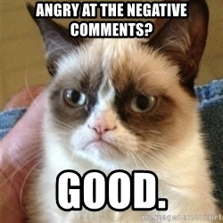 Grumpy Cat  - Angry at the negative comments?  good.