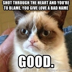 Grumpy Cat  - shot through the heart and you're to blame, you give love a bad name good.
