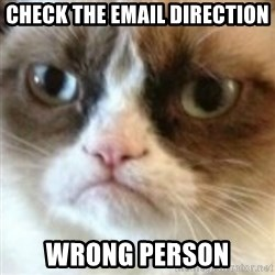 angry cat asshole - Check the email direction wrong person