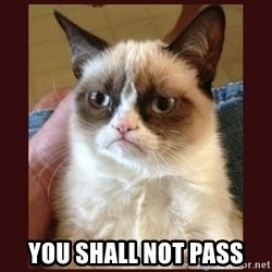 Tard the Grumpy Cat - You shall not pass
