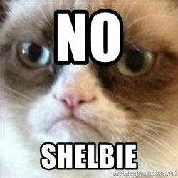 angry cat asshole - no shelbie