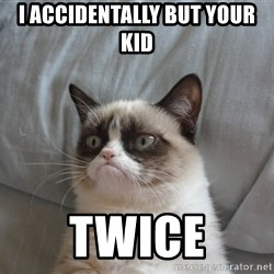 Grumpy cat good - I ACCIDENTALLY BUT YOUR KID TWICE