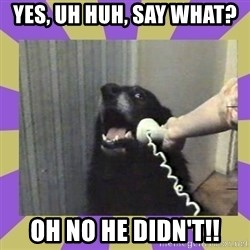 Yes, this is dog! - YES, UH HUH, SAY WHAT?  OH NO HE DIDN'T!!