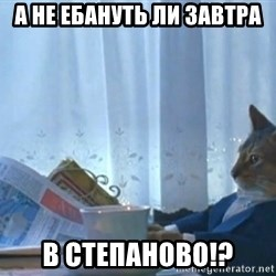 Sophisticated Cat - А не ебануть ли завтра в степаноВО!?