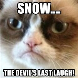 angry cat asshole - SNOW.... THe devil'S LAST LAUGH!