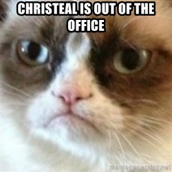 angry cat asshole - Christeal is out of the office