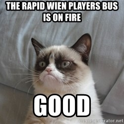 Grumpy cat good - The Rapid Wien Players Bus is on Fire GOOD