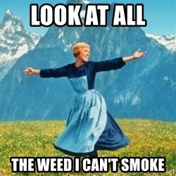 Sound Of Music Lady - Look at all  the weed i can't smoke