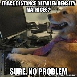 I have no idea what I'm doing - Dog with Tie - Trace distance between density matrices? Sure, no problem