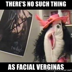 copilot - there's no such thing as facial verginas