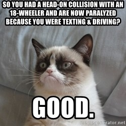 Grumpy cat good - So you had a head-on collision with an 18-wheeler and are now paralyzed because you were texting & driving? GOOD.