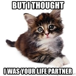 fyeahpussycats - but i thought i was your life partner