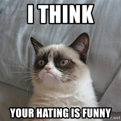 Grumpy cat good - i think  your hating is funny