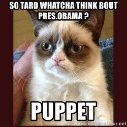Tard the Grumpy Cat - so tard whatcha think bout pres.obama ? puppet