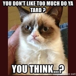 Tard the Grumpy Cat - you don't like too much do ya tard ? you think...?