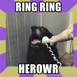 Yes, this is dog! - RING RING HEROWR