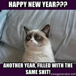 tard the grumpy cat 2 - Happy New Year??? Another Year, filled with the same shit!