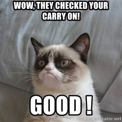 Grumpy cat good - WOW, they checked your carry on! GOOD !