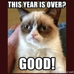 Tard the Grumpy Cat - This year is over? Good!