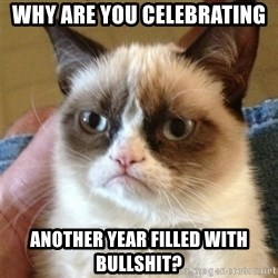 Grumpy Cat  - why are you celebrating another year filled with bullshit?