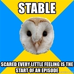 Bipolar Owl - stable scared every little feeling is the start of an episode