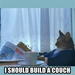 rich cat  - I should build a couch