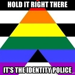 Bad Straight Ally - hold it right there it's the identity police