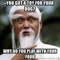 Pai  Mei - You got a toy for your dog? Why do you play with your food