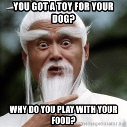 Pai  Mei - You got a toy for your dog? Why do you play with your food?