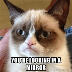 Madcat -  You're looking in a mirror