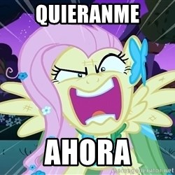 angry-fluttershy - quieranme ahora