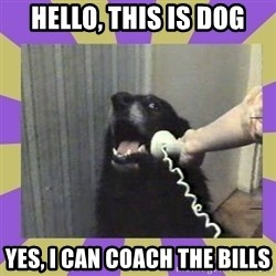 Yes, this is dog! - Hello, This is dog yes, I can coach the bills