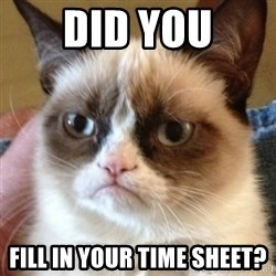 Madcat - Did you Fill in your time sheet?