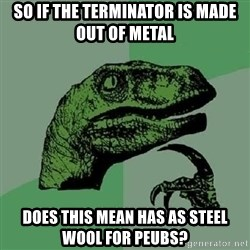 Philosoraptor - so if the terminator is made out of metal does this mean has as steel wool for peubs?