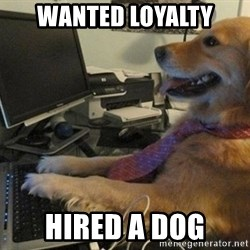 I have no idea what I'm doing - Dog with Tie - WANTED LOYALTY HIRED A DOG