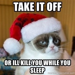 Grumpy Cat Santa Hat - TAKE IT OFF  OR ILL KILL YOU WHILE YOU SLEEP