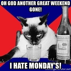 Alco-cat - OH GOD ANOTHER GREAT WEEKEND GONE! I HATE MONDAY'S!