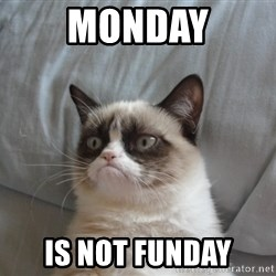 grumpy tard cat - Monday Is not Funday