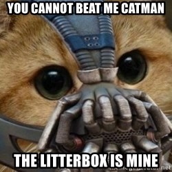 bane cat - YOU CANNOT BEAT ME CATMAN THE LITTERBOX IS MINE
