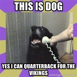 Yes, this is dog! - This is Dog Yes I can quarterback for the Vikings