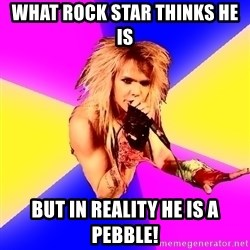Glam Rocker - what rock star thinks he is but in reality he is a pebble!