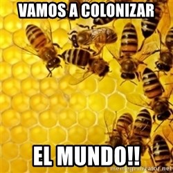 Honeybees - VAMOS A COLONIZAR EL MUNDO!!