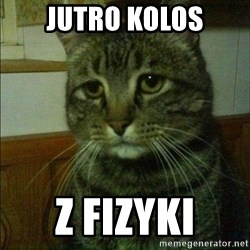 Depressed cat 2 - Jutro kolos Z fizyki